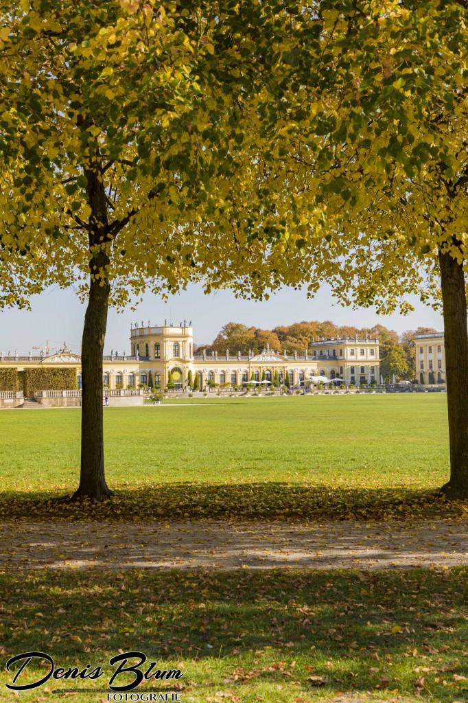 Blende8 Nordhessen Kassel Orangerie Karlsaue Foto-Nr. 2003-18