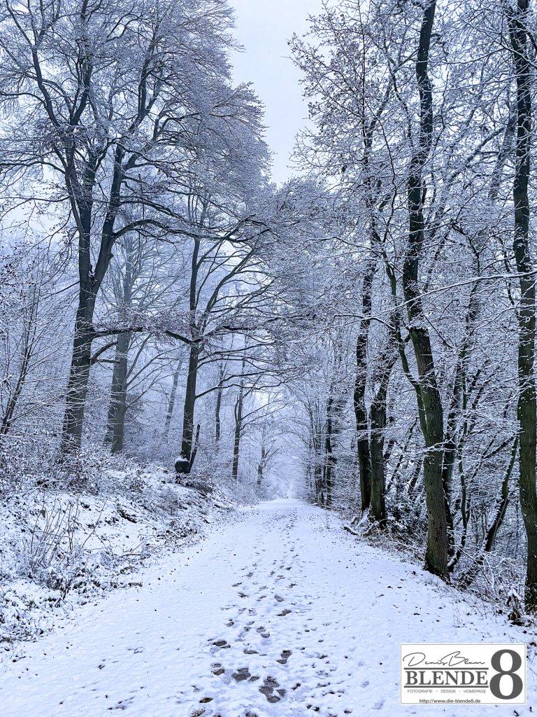 Blende8 Nordhessen Baunatal Winter Foto-Nr. 3006-53