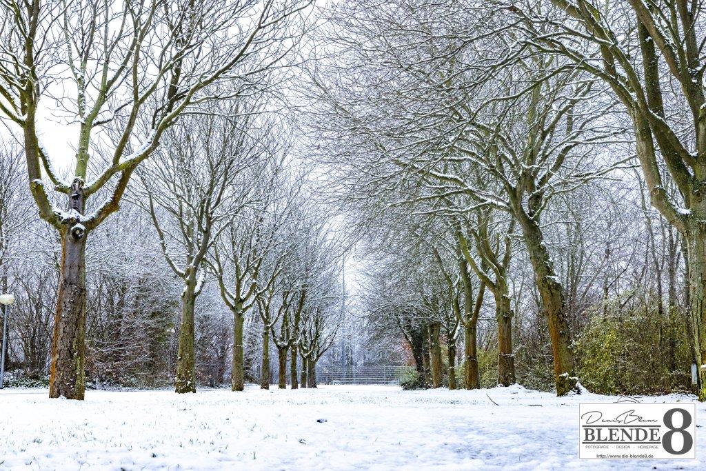 Blende8 Nordhessen Baunatal Winter Foto-Nr. 3006-27