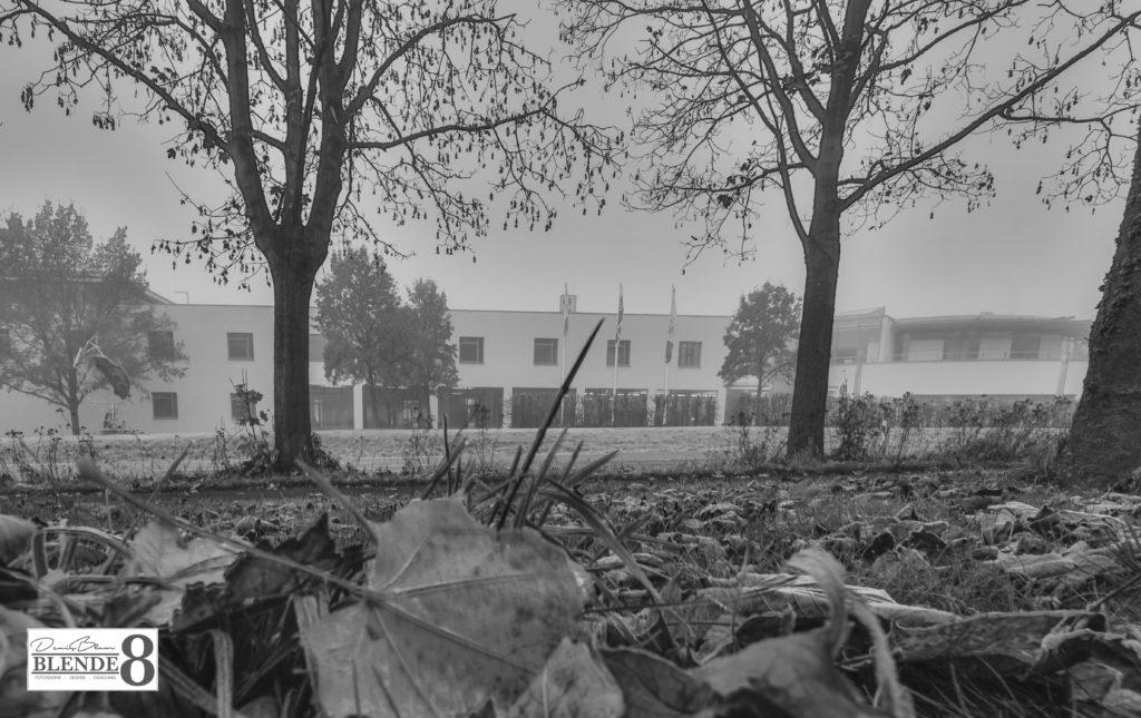 Blende8 Nordhessen Baunatal Stadtpark Foto-Nr. 3008-4