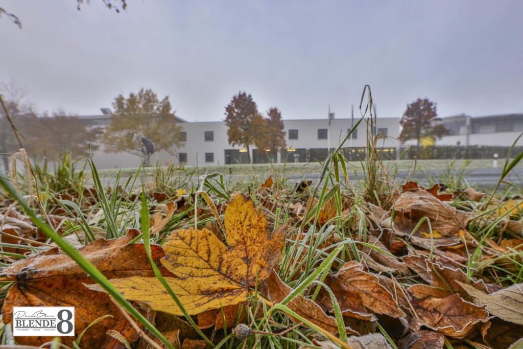 Blende8 Nordhessen Baunatal Stadtpark Foto-Nr. 3008-3