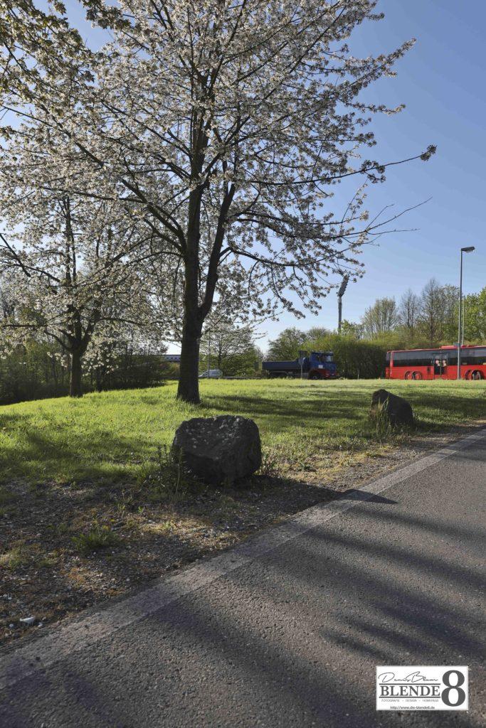 Blende8 Nordhessen Baunatal Altenritte Foto-Nr. 3007-5