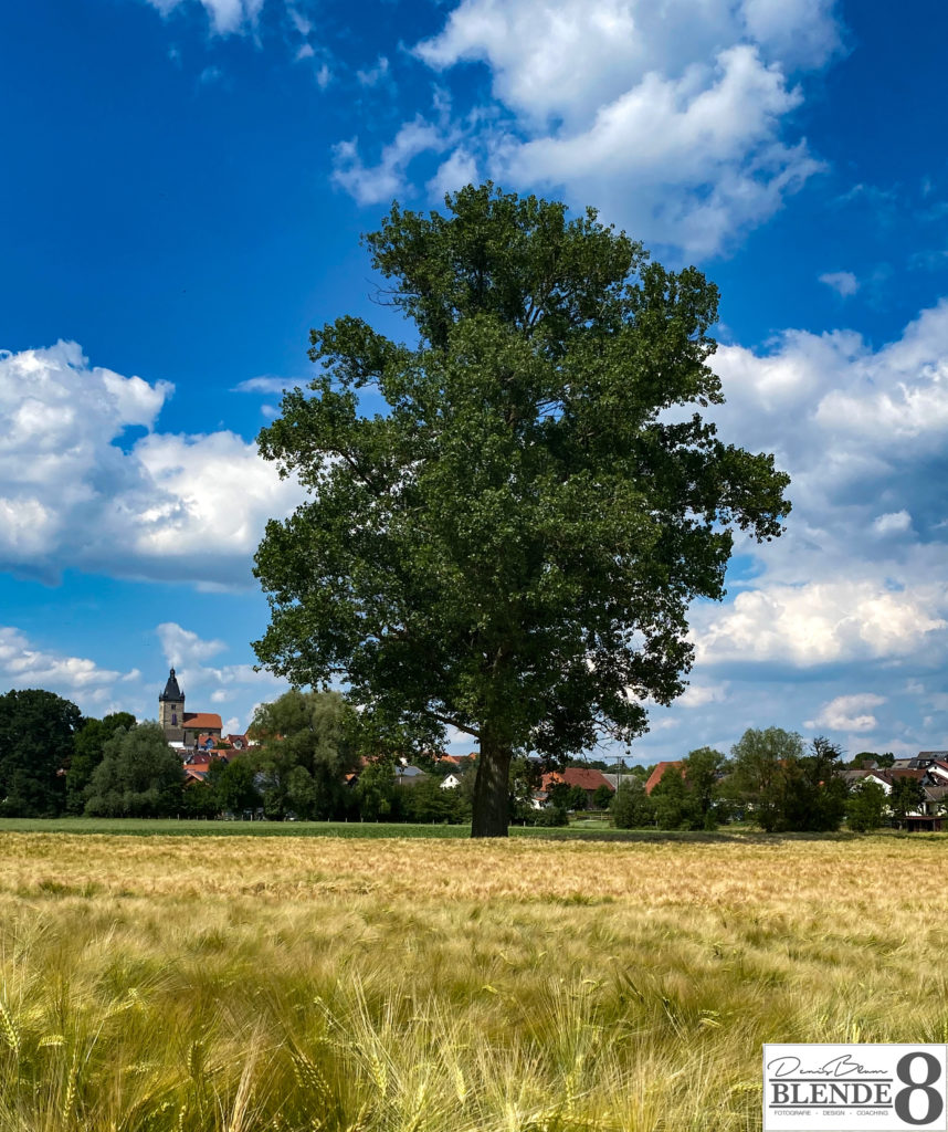 Blende8 Nordhessen Edermünde Besse Foto-Nr. 4001-18