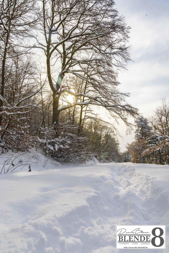Blende8 Nordhessen Baunatal Schnee Foto-Nr. 3015-110
