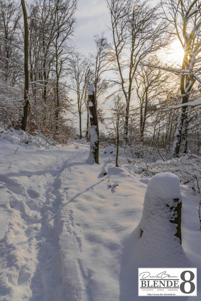 Blende8 Nordhessen Baunatal Schnee Foto-Nr. 3015-108