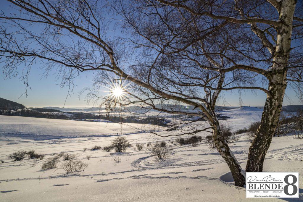 Blende8 Nordhessen Dörnberg Foto-Nr. 1004-00017
